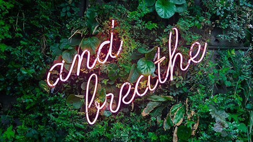 """Image of neon sign of the words """"and breathe"""" hanging from a foliage covered wall. Bereavement is hard, and Badass Therapy can support you with grief counseling in Colorado. Contact us for grief and loss therapy in Denver, online grief therapy in colorado, and more. Contact us today for support!"""